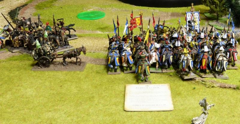 Warhammer Fantasy, Galerie de Batailles - Page 17 P1220519