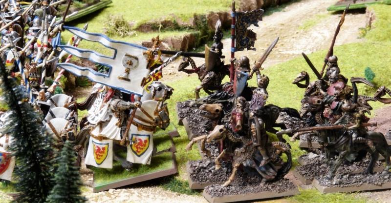Warhammer Fantasy, Galerie de Batailles - Page 17 P1220520