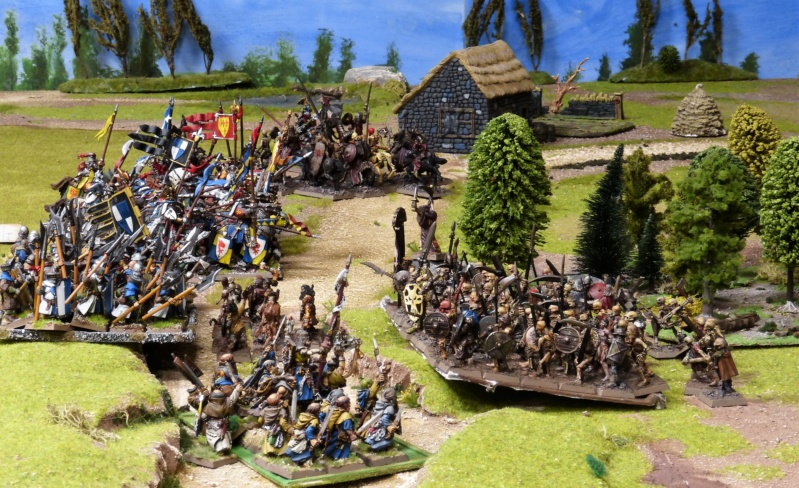 Warhammer Fantasy, Galerie de Batailles - Page 17 P1220522