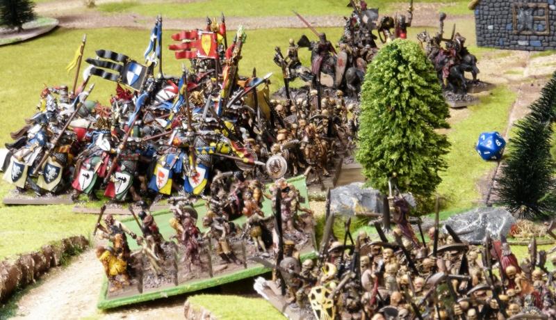 Warhammer Fantasy, Galerie de Batailles - Page 17 P1220524