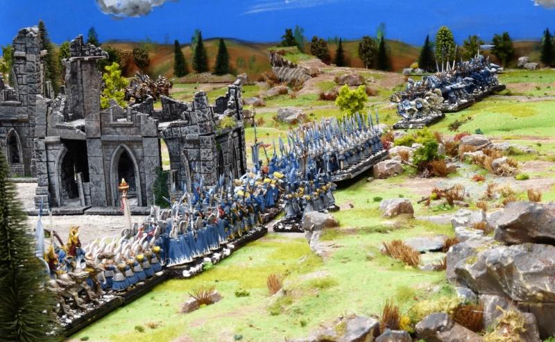 Warhammer Fantasy, Galerie de Batailles - Page 17 P1220528