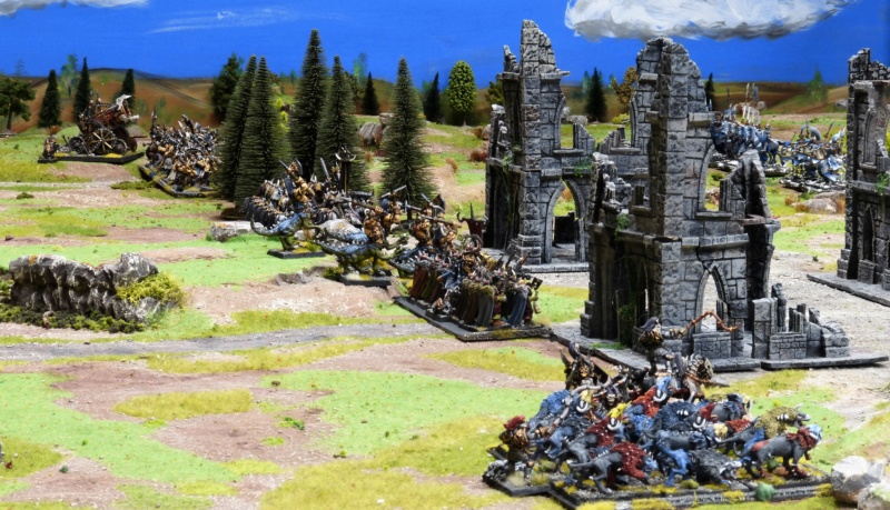 Warhammer Fantasy, Galerie de Batailles - Page 17 P1220529