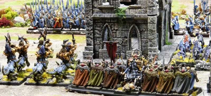 Warhammer Fantasy, Galerie de Batailles - Page 17 P1220530