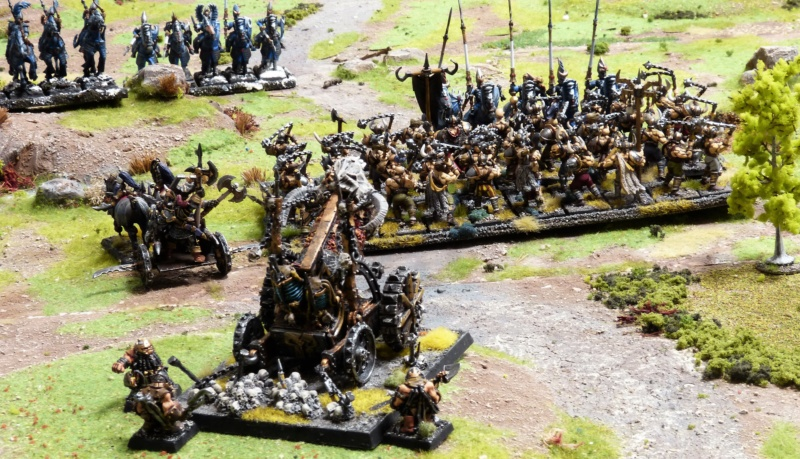 Warhammer Fantasy, Galerie de Batailles - Page 17 P1220532