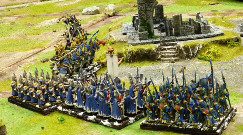 Warhammer Fantasy, Galerie de Batailles - Page 17 P1220536