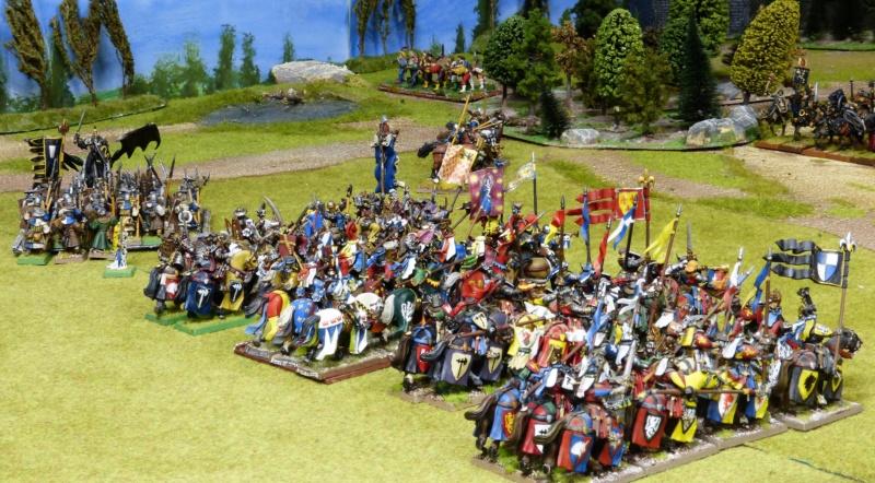 Warhammer Fantasy, Galerie de Batailles - Page 17 P1220543