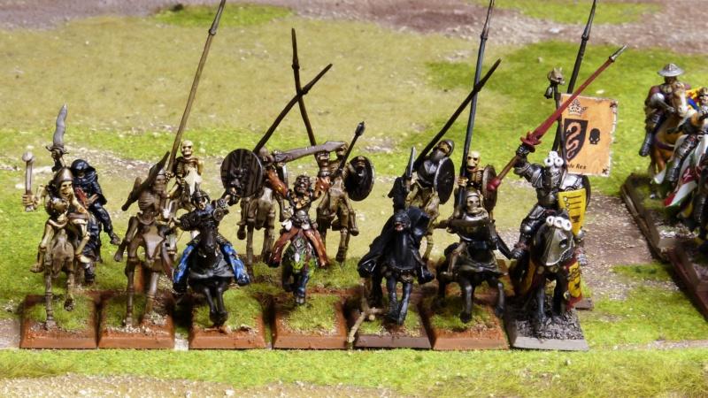 Warhammer Fantasy, Galerie de Batailles - Page 17 P1220547