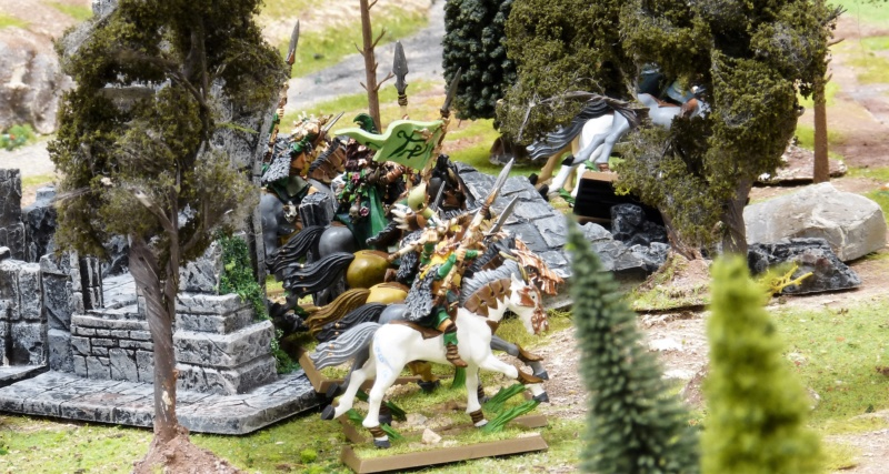 Warhammer Fantasy, Galerie de Batailles - Page 17 P1220567