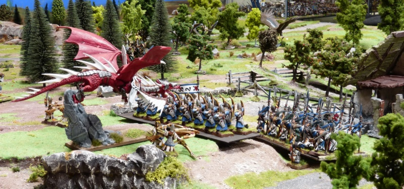 Warhammer Fantasy, Galerie de Batailles - Page 17 P1220568
