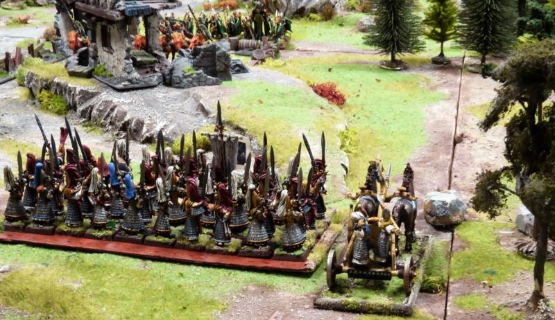 Warhammer Fantasy, Galerie de Batailles - Page 17 P1220570