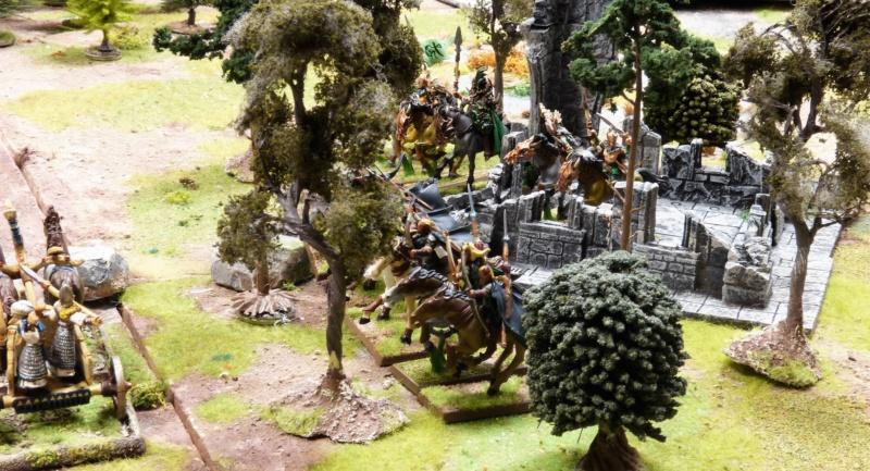 Warhammer Fantasy, Galerie de Batailles - Page 17 P1220571