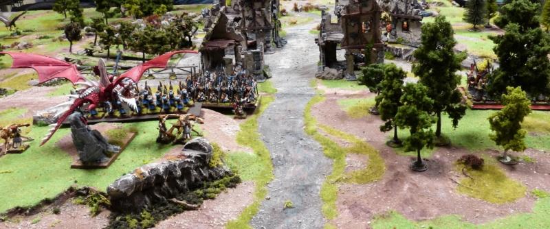 Warhammer Fantasy, Galerie de Batailles - Page 17 P1220573