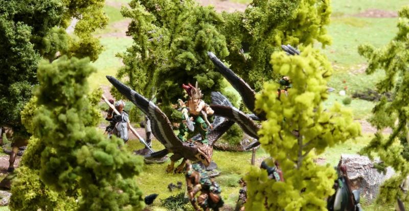 Warhammer Fantasy, Galerie de Batailles - Page 17 P1220575