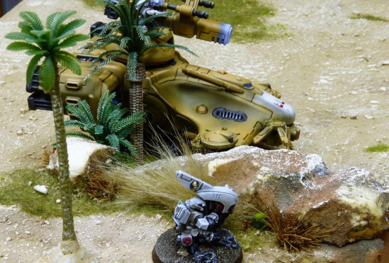 Warhammer 40K. Galerie de Batailles ! - Page 6 P1220586