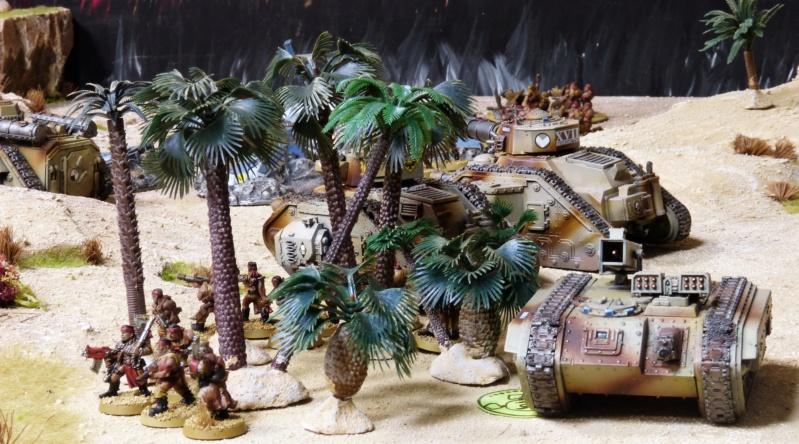 Warhammer 40K. Galerie de Batailles ! - Page 6 P1220587