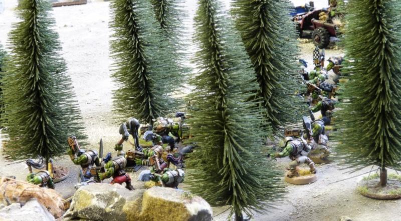 Warhammer 40K. Galerie de Batailles ! - Page 6 P1230015