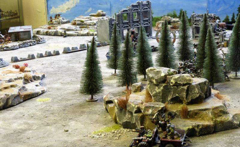 Warhammer 40K. Galerie de Batailles ! - Page 6 P1230016