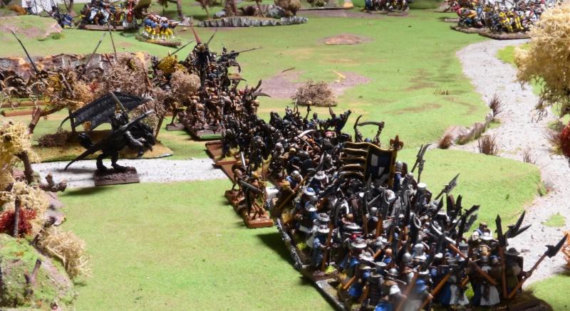 Warhammer Fantasy, Galerie de Batailles - Page 17 P1230118