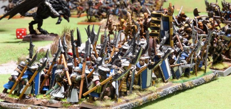 Warhammer Fantasy, Galerie de Batailles - Page 17 P1230124