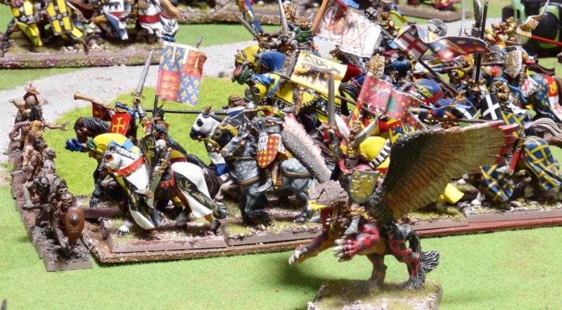Warhammer Fantasy, Galerie de Batailles - Page 17 P1230129