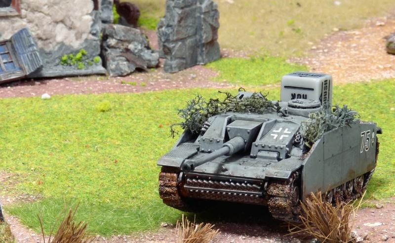Opération Market Garden, campagne du Club Rathelot P1230170