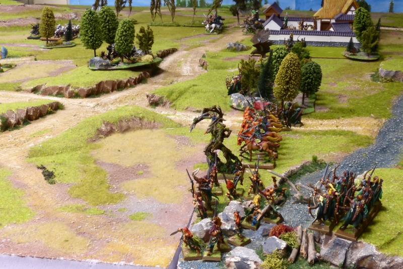 Warhammer Fantasy, Galerie de Batailles - Page 17 P1230484