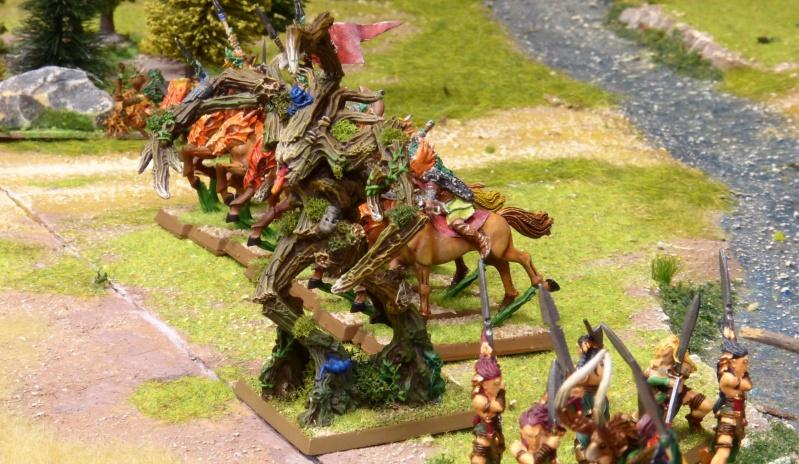 Warhammer Fantasy, Galerie de Batailles - Page 17 P1230485