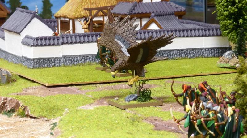 Warhammer Fantasy, Galerie de Batailles - Page 17 P1230486