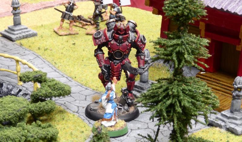 Warhammer Fantasy, Galerie de Batailles - Page 17 P1230490