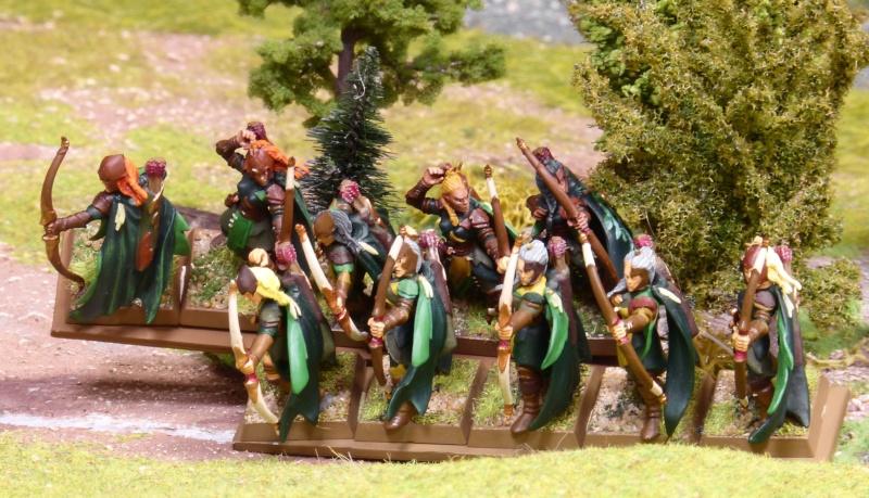Warhammer Fantasy, Galerie de Batailles - Page 17 P1230491