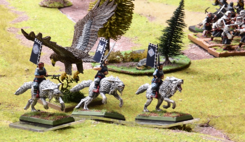 Warhammer Fantasy, Galerie de Batailles - Page 17 P1230492