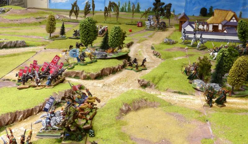 Warhammer Fantasy, Galerie de Batailles - Page 17 P1230498