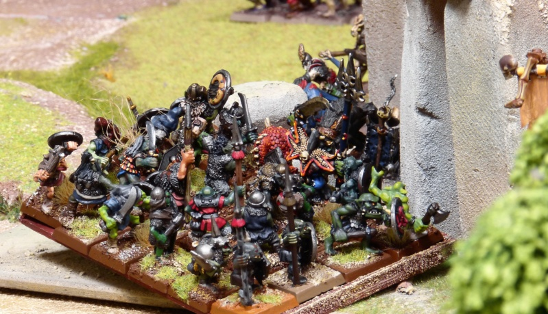 Warhammer Fantasy, Galerie de Batailles - Page 17 P1230596