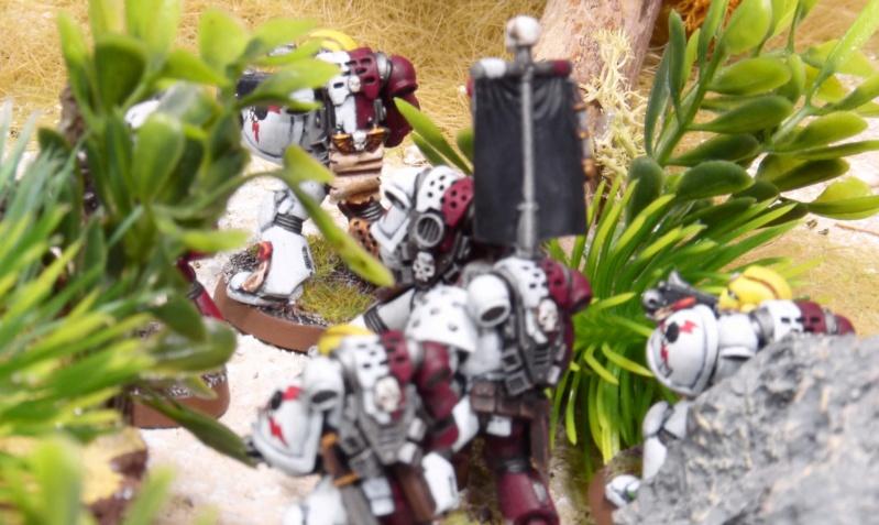 Warhammer 40K. Galerie de Batailles ! - Page 6 P1230733