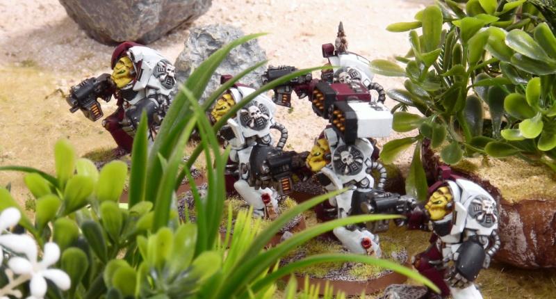 Warhammer 40K. Galerie de Batailles ! - Page 6 P1230735