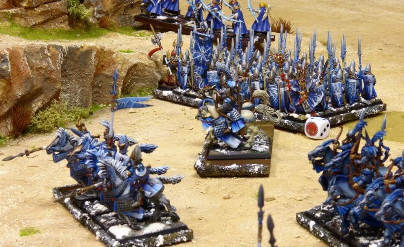 Warhammer Fantasy, Galerie de Batailles - Page 17 P1230738