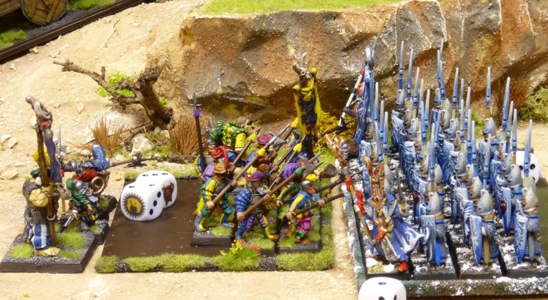 Warhammer Fantasy, Galerie de Batailles - Page 17 P1230812