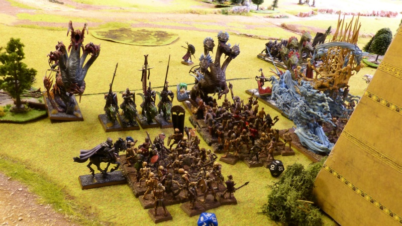 Warhammer Fantasy, Galerie de Batailles - Page 17 P1240782