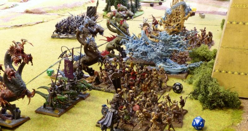 Warhammer Fantasy, Galerie de Batailles - Page 17 P1240783