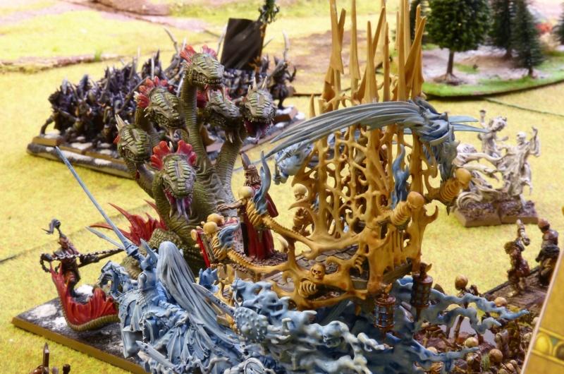 Warhammer Fantasy, Galerie de Batailles - Page 17 P1240784