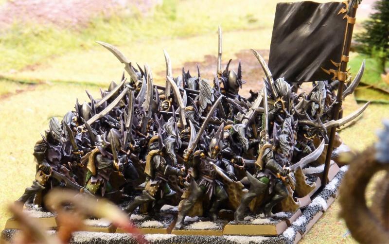 Warhammer Fantasy, Galerie de Batailles - Page 17 P1240785
