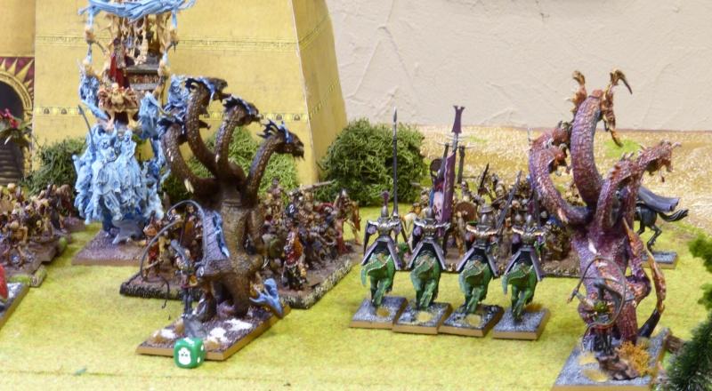 Warhammer Fantasy, Galerie de Batailles - Page 17 P1240787