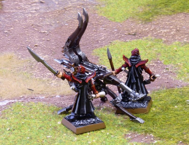 Warhammer Fantasy, Galerie de Batailles - Page 17 P1240788
