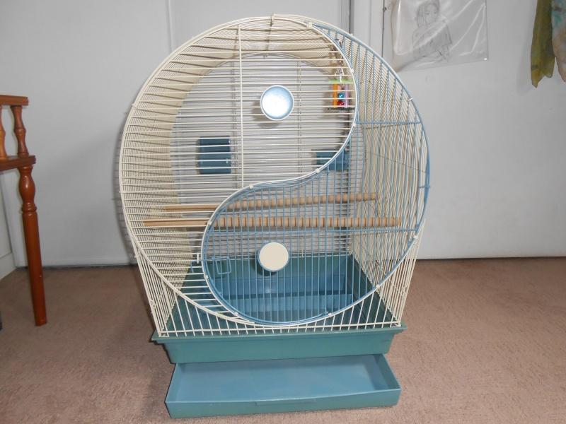 Cage à vendre en Ile de France (92) VENDUE Dscn4510