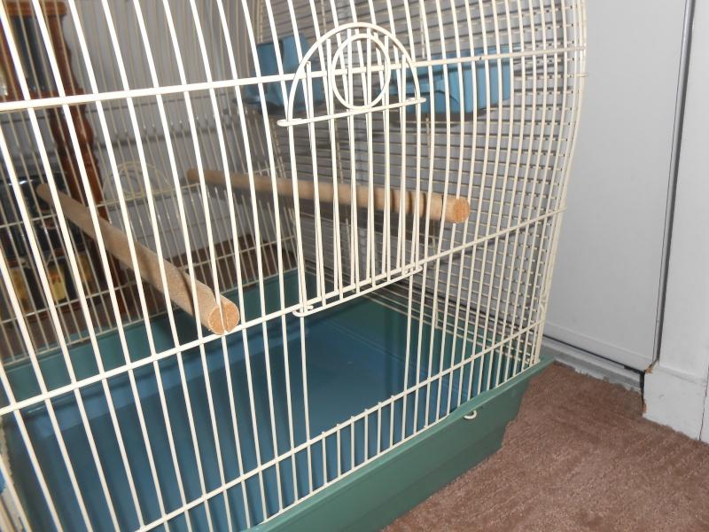Cage à vendre en Ile de France (92) VENDUE Dscn4512