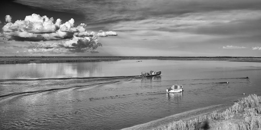 Bateaux, dans la Baie de Somme _dsc6511