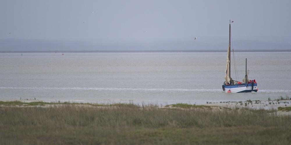 Bateaux, dans la Baie de Somme _dsc6810