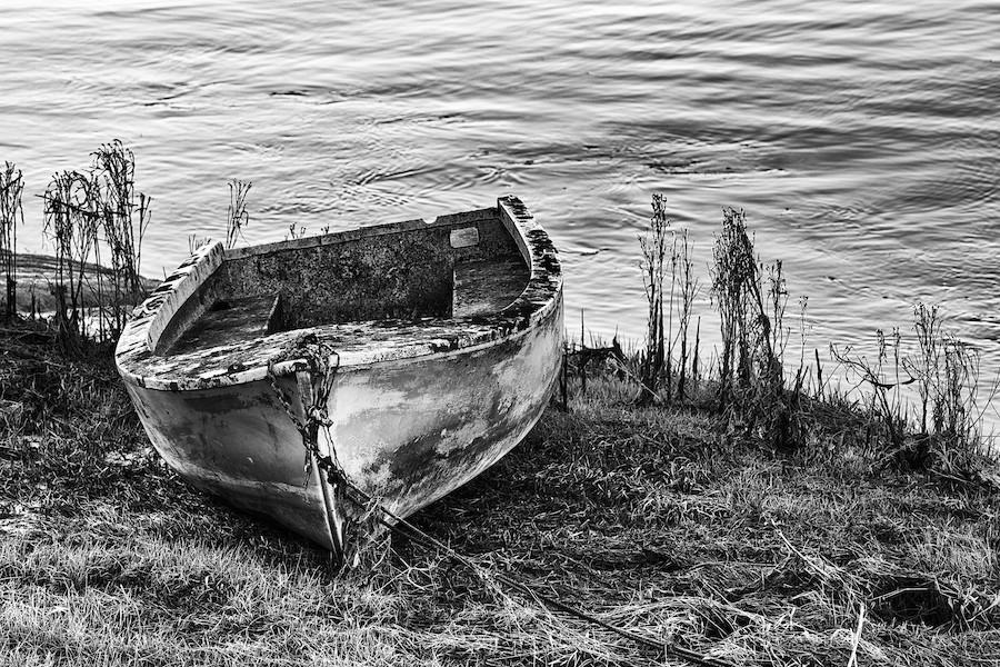 Bateaux, dans la Baie de Somme _dsc7212