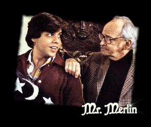 Monsieur Merlin Mrmerl10