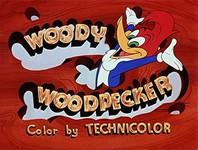 Le Woody Woodpecker Show Woody-11